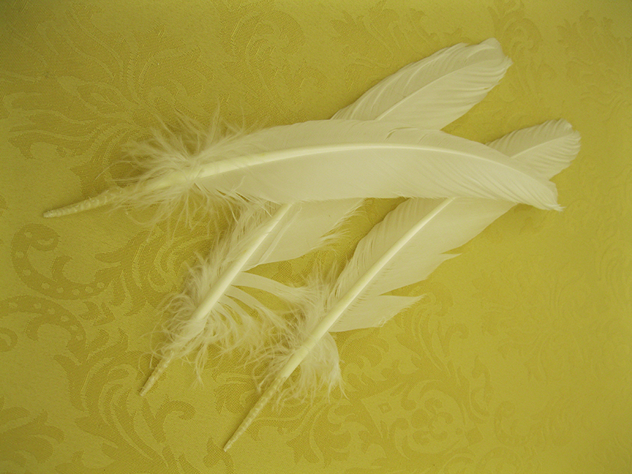 Quills, made from wing feathers of large birds like geese, were used for writing
